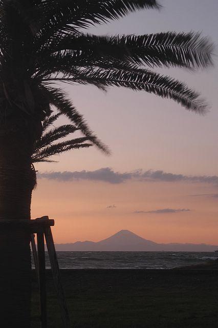 file239L ときどき富士見 18 DSCN1407-2-c.jpg