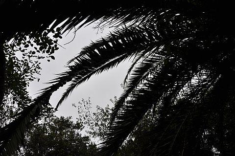 file27-3m 島影のコンポジション 7 DSC_0333.jpg