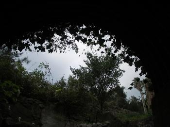 写真 ファミリーパーク2-4.jpg