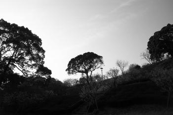 TATEYAMA 散策3-19.jpg