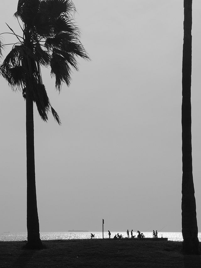file265_1LL 海辺のフォトスケッチ 15 DSCN1714.jpg